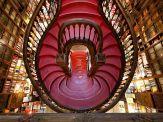 livraria-lello-bookstore-porto