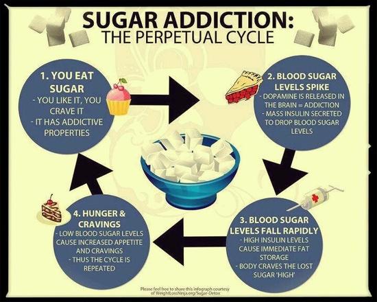 sugar-addiction-life-cycle